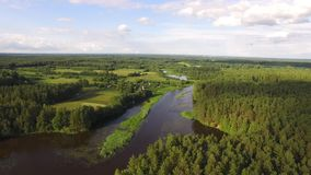 Amazing european belarusian wild nature. Beautiful view of the river, field, village, lake in pine forest. Stracha river. Belarus. Drone aerial shot stock video