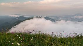 Evening above clouds moving in valley time lapse. Sunset over meadow flowers. Full HD 1920 x 1080. Timelapse video of beautiful evening sunset above clouds in stock video