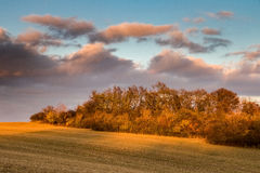 Amazing evening light in autumnal landscape Stock Photo