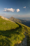 Amazing evening on ridge of the summer mountains Stock Images