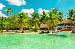 Amazing exotic palm tree beach with colorful boat, Dominican Republic. Amazing exotic full of high palm tree beach with colorful boat in the foreground Royalty Free Stock Photo