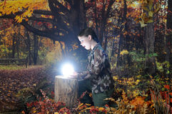 Amazing Find in the Autumn Woods Stock Photo