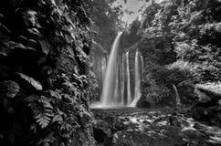 Amazing fine art black and white Tiu Kelep Waterfall near Rinjani, Senaru Lombok indonesia. Southeast Asia. royalty free stock image