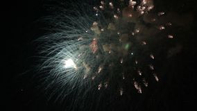Amazing firework show. Bright splashes of flowers of salute against night sky. Victory day. stock footage