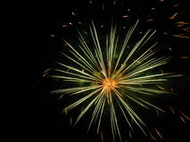 Amazing fireworks. Beautiful fireworks in the dark night Stock Photos