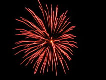 Amazing fireworks. Beautiful fireworks in the dark night Royalty Free Stock Photography