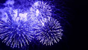Amazing fireworks flowers on the night sky. Brightly blue fireworks on dark black color background. Holiday relax time with. A pyrotechnic show. Festive event stock photography