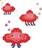Amazing fishes Stock Image