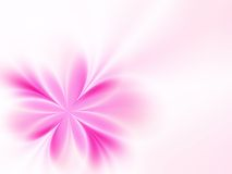 Amazing flower. Pink flower on a pink background Royalty Free Stock Image