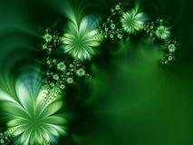 Amazing flowers. Beautiful green flowers on a black bakground Royalty Free Stock Photography