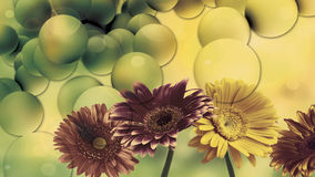 Amazing flowers wallpaper design. Colorful flowers in amazing tint for wall decals Royalty Free Stock Image