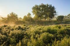Amazing foggy landscape Stock Image