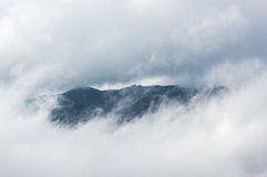 Amazing foggy moment. Landscape. Royalty Free Stock Photos