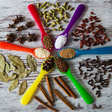 Amazing fresh aromatic spices in the colorful spoons. Stock Photo