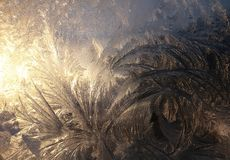 Amazing frost design on glass window pane backlit by rising sun. Golden sun rising enhances intricate feathery like frost pattern on window with variation in royalty free stock photography