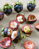 Amazing, funny, mangosteen, worried, anxiou face. Amazing background with funny idea, impersonation, mangosteen with worried, anxious, humorous face, contrast Royalty Free Stock Photo