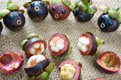 Amazing, funny, mangosteen, worried, anxiou face. Amazing background with funny idea, impersonation, mangosteen with worried, anxious, humorous face, contrast Royalty Free Stock Image