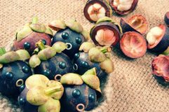 Amazing, funny, mangosteen, worried, anxiou face Royalty Free Stock Images