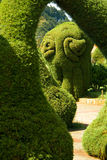 Bushes and hedges trimmed. Garden with bushes and hedges trimmed in amazing forms Stock Photography