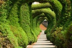 Juniper Sculpture Garden Stock Photos