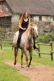 Amazing girl riding a horse without bridle Royalty Free Stock Photo