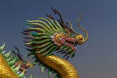 Amazing golden dragon head at chinese temple. With blue sky background Stock Photography