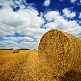 Amazing Golden Hay Bales Royalty Free Stock Photography