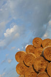 Amazing Golden Hay Bales stock images