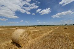Amazing Golden Hay Bales Stock Photos