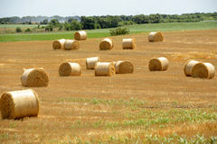 Amazing Golden Hay Bales. On a perfect sunny day Royalty Free Stock Photography