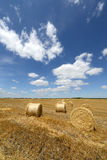 Amazing Golden Hay Bales Royalty Free Stock Photos