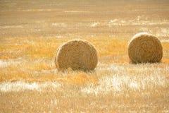 Amazing Golden Hay Bales Stock Photography