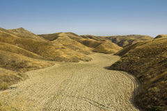 Amazing Golden Rolling Hills Stock Photography