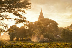 Amazing golden sunset with sunbeams over fields and ancient arch Stock Photos