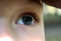 An amazing grey-blue boy`s eye Royalty Free Stock Image