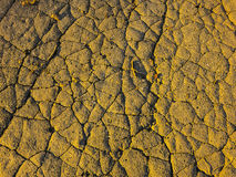 Amazing ground texture. Beautiful cracked ground texture on an amazing noon Royalty Free Stock Photos