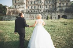 Amazing happy gentle stylish beautiful romantic caucasian couple on the background ancient baroque castle Stock Images