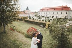 Amazing happy gentle stylish beautiful romantic caucasian couple on the background ancient baroque castle.  Royalty Free Stock Image