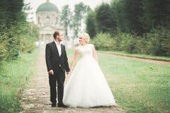 Amazing happy gentle stylish beautiful romantic caucasian couple on the background ancient baroque castle.  Stock Images