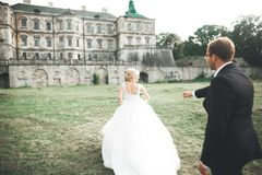 Amazing happy gentle stylish beautiful romantic caucasian couple on the background ancient baroque castle.  Stock Photography