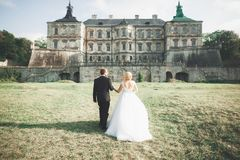 Amazing happy gentle stylish beautiful romantic caucasian couple on the background ancient baroque castle.  Royalty Free Stock Images