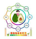 Amazing Health Benefits of Avocado Royalty Free Stock Image