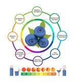 Amazing Health Benefits of blueberry. Amazing Health Benefits of fruits Stock Photo