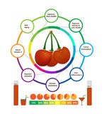 Amazing Health Benefits of cherry. Amazing Health Benefits of fruits Royalty Free Stock Images