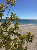 Stunning beach view. Beachside sunshine lakefront view Royalty Free Stock Photos