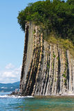 Amazing high rock with a forest at the top by sea. Rock Kiselev Stock Photos