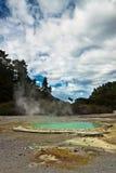 Amazing hot pool - New Zealand Royalty Free Stock Photography