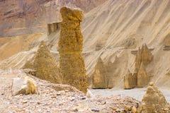 Amazing huge sandy figures in the high desert stock photography