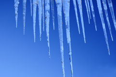 Amazing icicles Stock Image