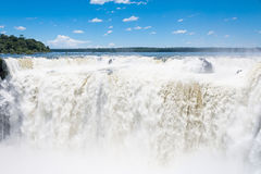 Amazing  Iguassu waterfall Stock Photo